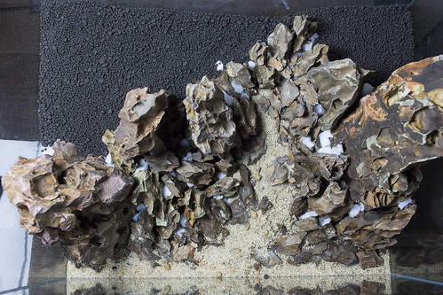 mountain hardscape top view   by nigel_kh