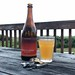 Drinking a Temple of Heaven by Holy Mountain Brewing