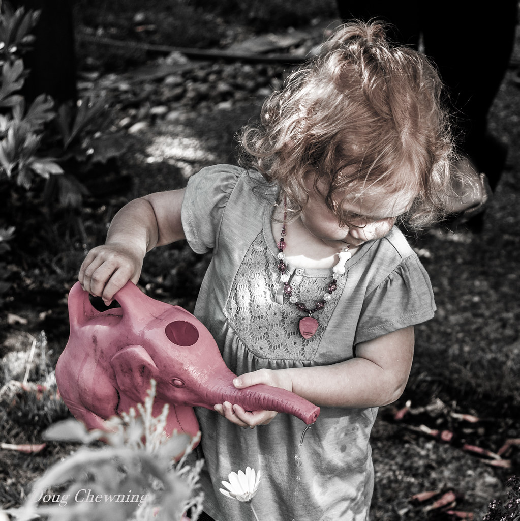 Garden Helper  | My Granddaughter Helping Out In The Garden ...