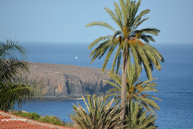 Punta Gaviota
