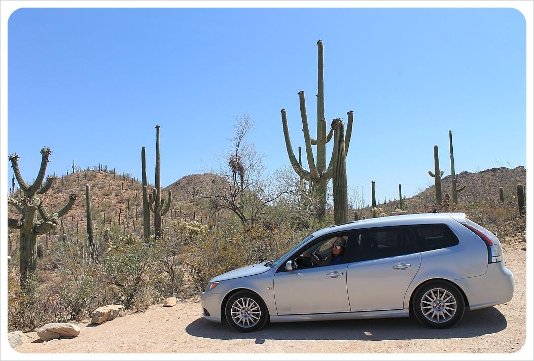 car in saguaro national park