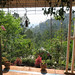 Vue du balcon à Nilgiri