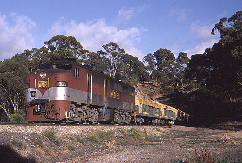 965 on the Strathalbyn goods by Bingley Hall