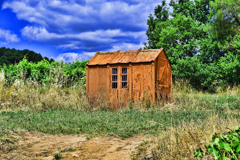Shed near grapevines