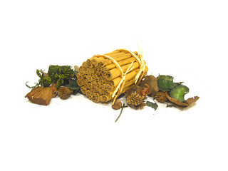 Ceylon Cinnamon Sticks_12 | by CINNAMON VOGUE