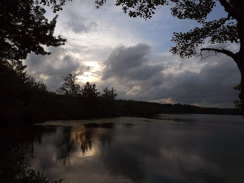 trees sunset sky reflection tree nature water leaves silhouette clouds reflections cloudy silhouettes waterreflection waterreflections waterripples