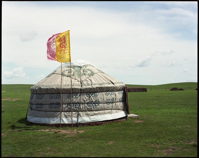yurt so good