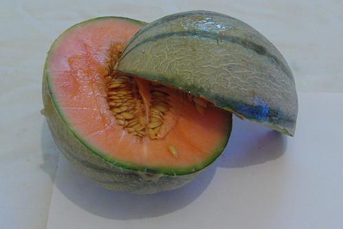 Canteloupe melon stylish shot | by richard_north
