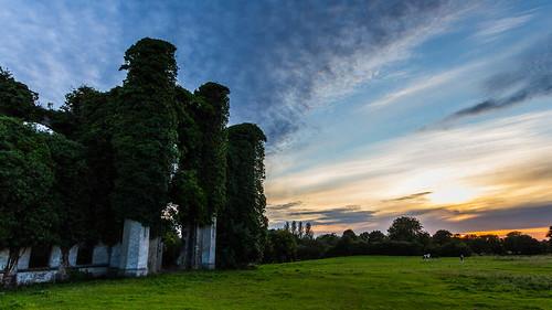 ireland sunset castle clouds canon u2 landscape vines europe farm ruin sigma1020mm westmeath unforgettablefire 60d 365project moydrum
