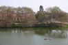 湖畔江南lake view