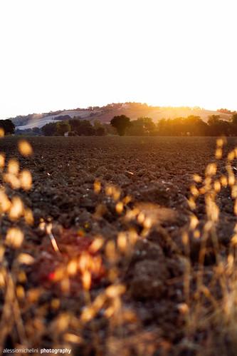 morning italy sun sunrise landscape marcheregion regionemarche