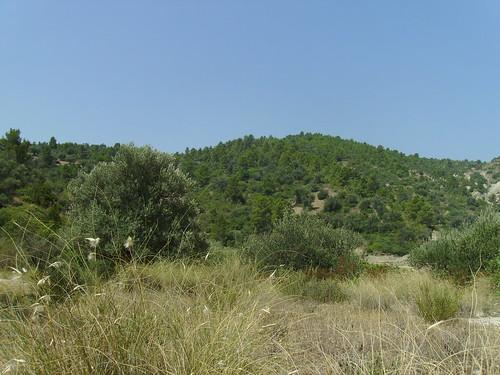 nature kabylie algerie bejaia soummam remila