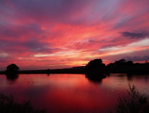 trees sunset summer sky water clouds reflections july reservoir lancashire mystical magical longridge ribblevalley colourfuldisplay lancashirelass toplodge tootleheights lancashirelassphotos suebristo