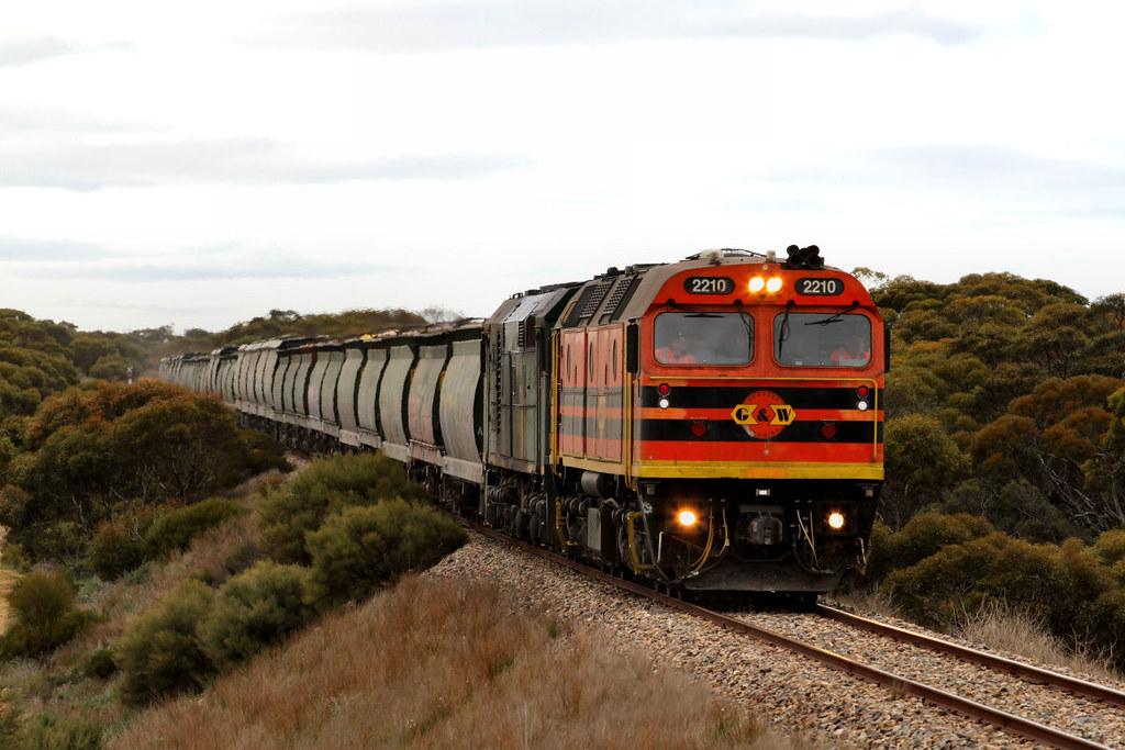 2210 701 3142s Loaded Allawoona Grain between Karoonda and Wynarka 12 08 2012 by Daven Walters
