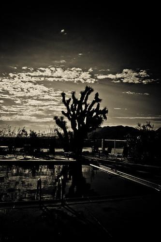 california 2012