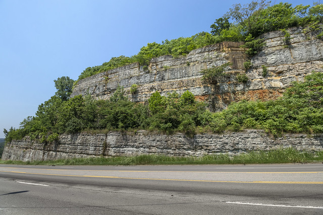 Fort Payne formation, Sequatchie formation, Leipers-Catheys limestone, State Hwy 251, Davidson County, Tennessee 2