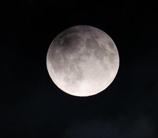 Harvest moon II | by billplumtree
