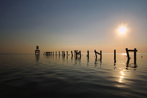 lake water landscape louisiana northshore pilings 15mm madisonville lakepontchartrain oldpier mrgreenjeans gaylon canonef100mmf28macrousm gaylonkeeling