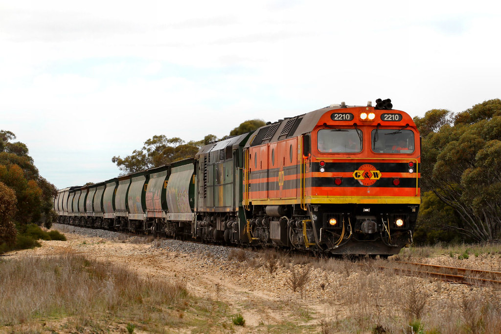2210 701 3142s Loaded Allawoona Grain Wingamin Rd Karoonda 12 08 2012 by Daven Walters