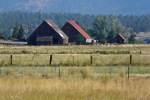 california roof red field barn rural norcal hwy395 susanville lassencounty