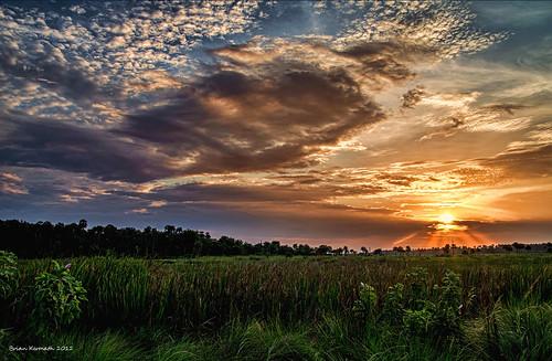sunset florida nationalgeographic centralflorida lakewoodruff flickraward flickraward5 flickrawardgallery rubyinvite