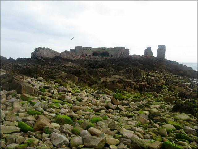 Fort Les Houmeaux Florains, Alderney