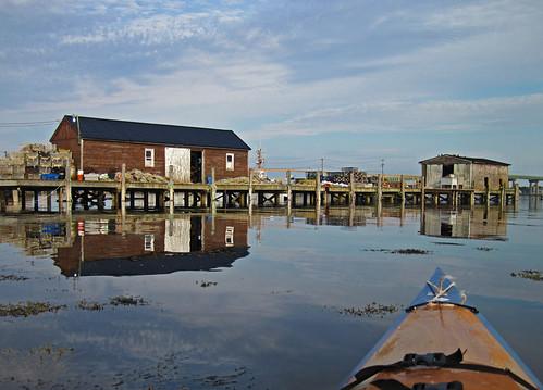 maine kayaking lobstering jonesport buoyant