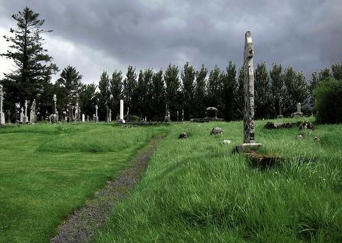 trees ireland sky green graveyard grass clouds europe eire graves trail mayo churchyard ballintubber ballintober