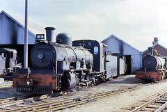 Humewood Road Port Elizabeth South Africa 27th May 1982