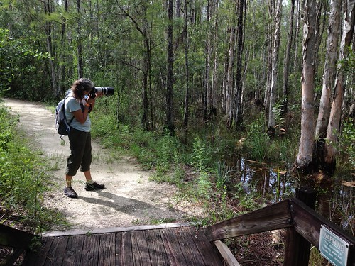 Calusa Nature Center has water | by Erin *~*~*