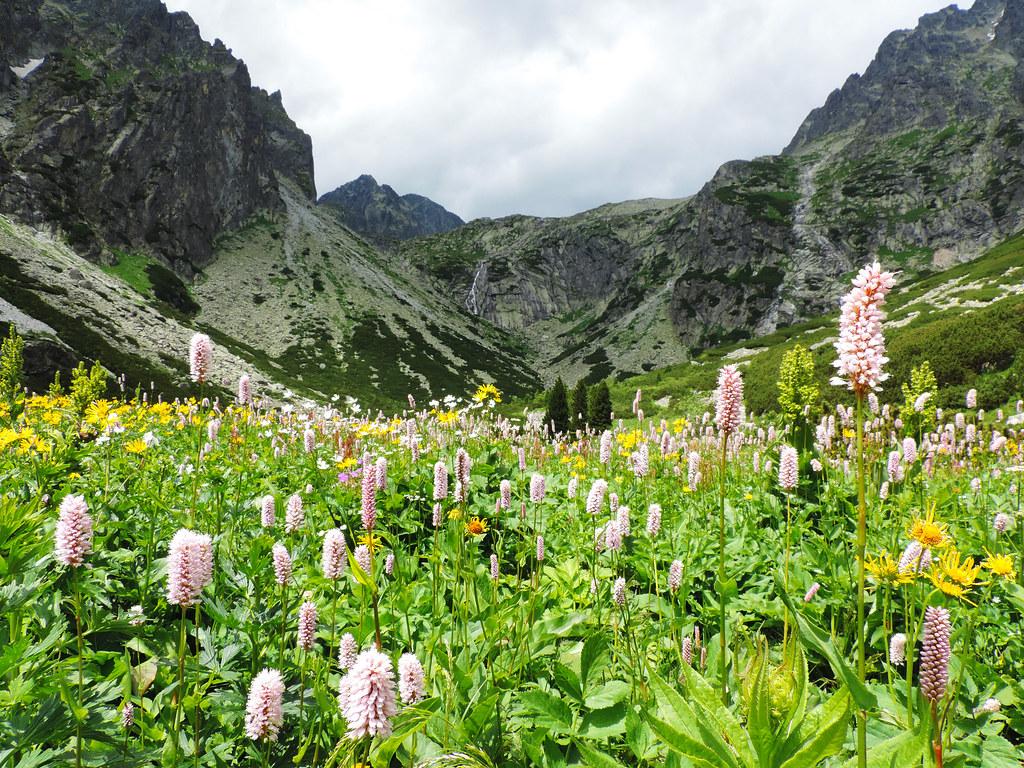 Small Cold Valley, High Tatras, Slovakia