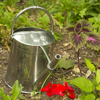Match Pewter Watering Can   by Didriks