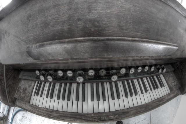 Smiling organ!
