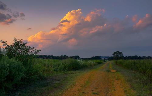 road sunset landscape newjersey nj manalapan