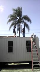 Trailer Roof Installation