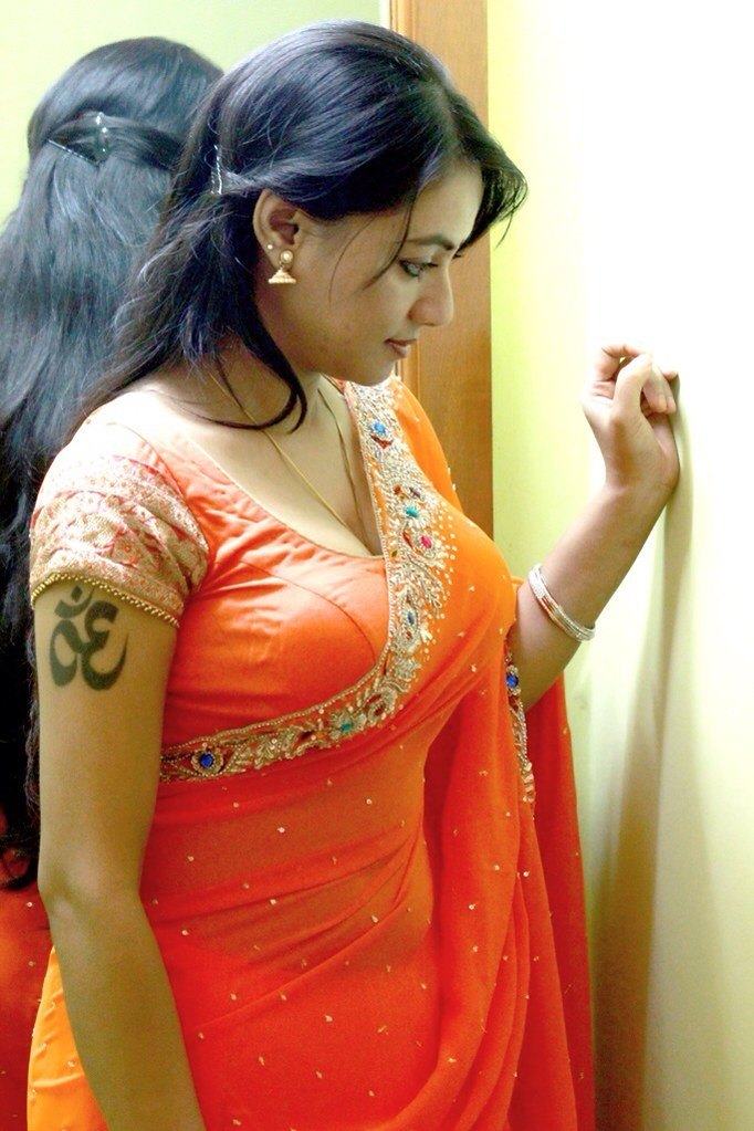 Hot In Saree  Madhuchanda  Kannadatimes-3459