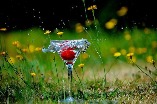 red summer motion strawberry nikon coins freezing fast coke splash splatter fastshutter highspeedphotography freezingfastmotion