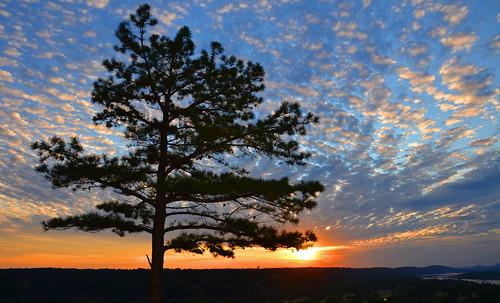 blue sunset sky orange colors silhouette clouds happybirthdaytome hcs odc2 ourdailychallenge clichesaturday