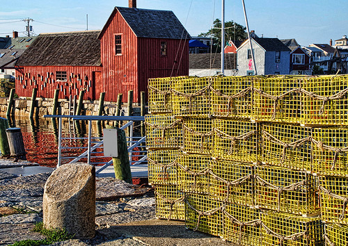 Motif #1 and Lobster traps