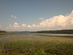 土, 2012-08-04 15:14 - 車窓(モントリオール〜NY