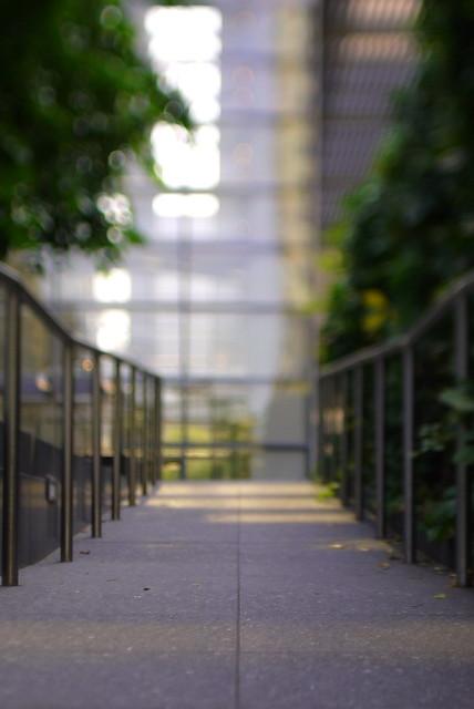 Walk the Thin Line of Focus