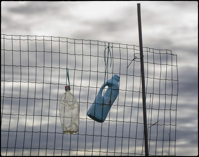 Rete e bottiglie, nei pressi di Ponticelli, 13 settembre 2012