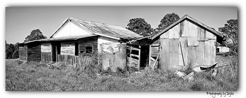 light home sad property nsw wauchope kingcreek zanardis