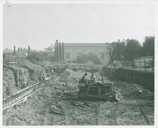 Preparing the ground for the construction of Walker Hall in November 1952