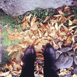 Autumn leaves are yellow, stones are grey, boots are black and somehow we still have green grass... #azstagram #azerbaijan #autumn #sheki #leaves #me #fromwhereiam #fromwhereistand #stones #colors #businesstrip | by L_Y_A_K_A