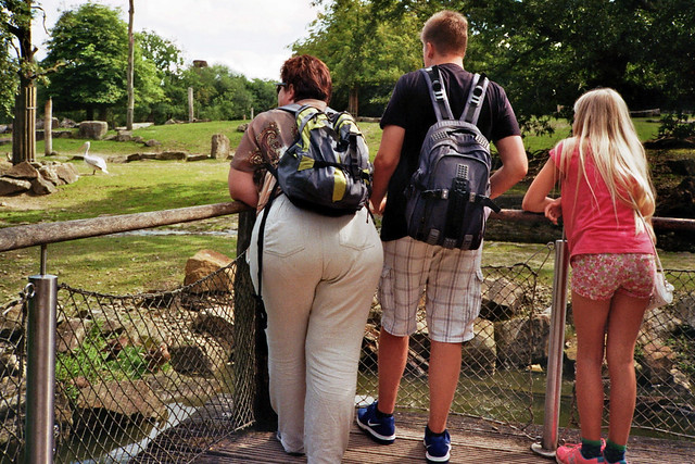 Besuch im Zoo - I shot film