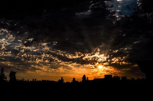 california sunset orange silhouette clouds dark evening petaluma norcal
