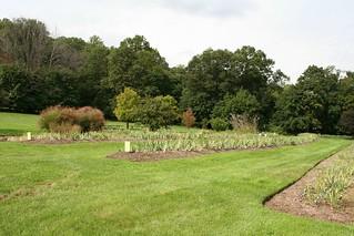 Presby Iris Gardens Autumn Afternoon