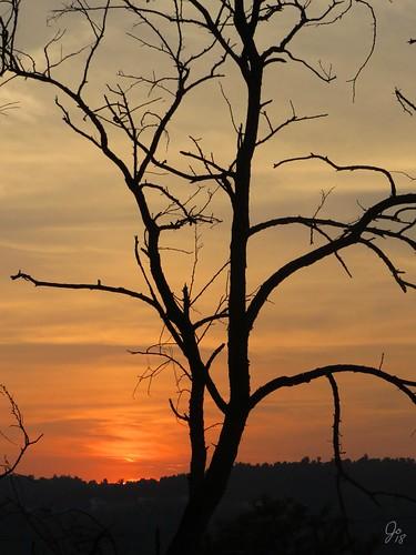 wheeling wv sunset
