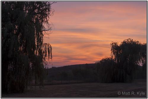 morning trees sky sunrise canon landscape thunderovermichigan